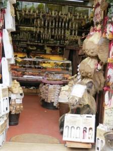 Shop in San Gimignano with a stuffed wild boar's head